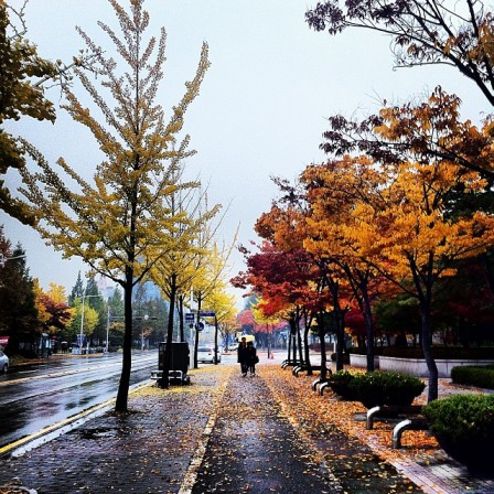 Daejeon2